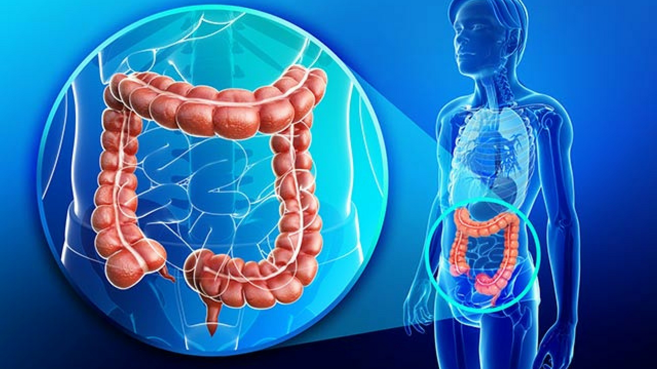 Colon hydrotherapy benefits for the body dr thomas lodi there are numerous colon hydrotherapy benefits for not only the colon but the entire body ccuart Choice Image