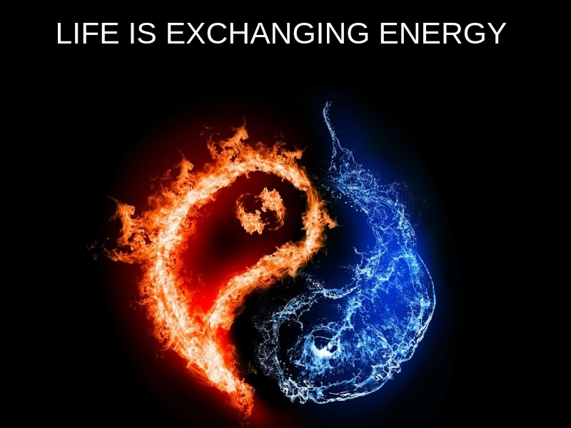 Life Is The Ability To Exchange Energy