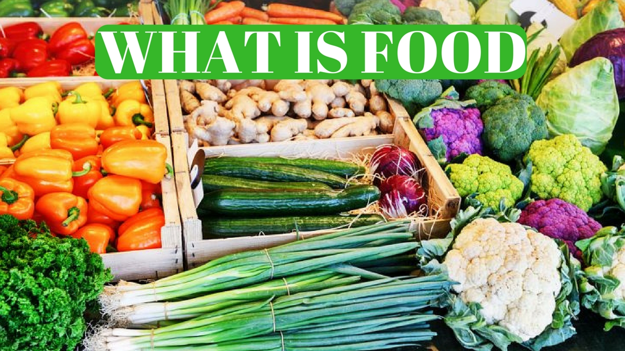 What Is Food?