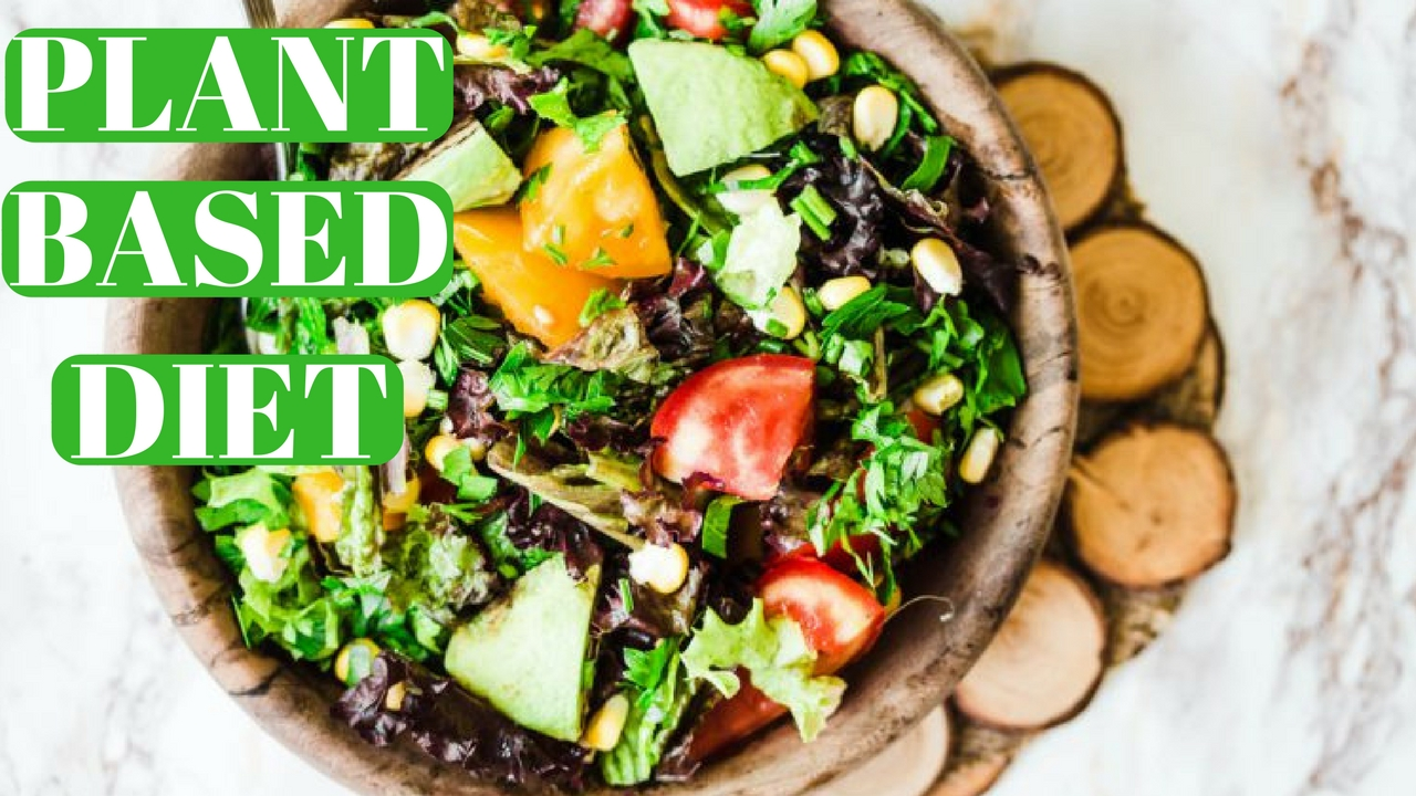 Why Eat A Plant Based Diet?