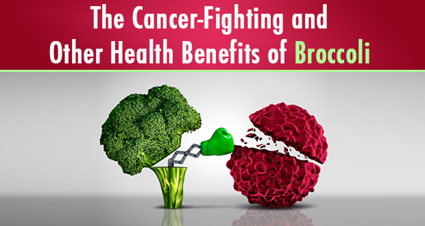 breasts broccoli and cancer