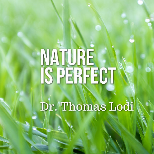 dr thomas lodi nature is perfect